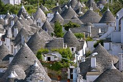 City tours,Theme tours,Historical & Cultural tours,Excursion to Trulli of Alberobello