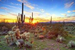 Ver la ciudad,Ver la ciudad,Actividades,Noche,Actividades de aventura,Adrenalina,Tours nocturnos,Tours nocturnos,Excursión a desierto de Sonora
