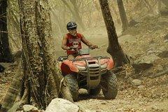 Actividades,Actividades de aventura,Adrenalina,Aventura: tirolina, rappel, todoterreno...