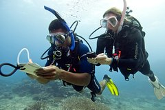 Hurghada Red Sea and Sinai SSI Navigation 108808P38