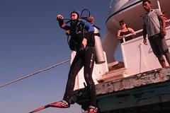 Hurghada Red Sea and Sinai SSI Boat Diving 108808P41