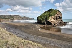 Imagen Private Tour of Bethells Beach and Lake from Auckland