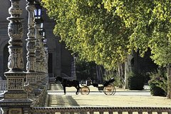Imagen Horse-drawn carriage ride through Seville
