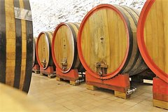 Wine tasting, Valpolicella cellar visit, Amarone and red wines region day tour