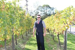 Imagen Private Tour of West Auckland's Kumeu Wine Trail