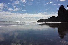 Imagen Private Tour of Piha and KiteKite Falls from Auckland