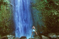 Honolulu Hawaii Manoa Waterfall Small Group Adventure 33589