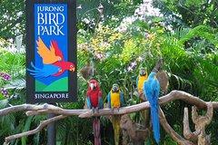 Bird Park Tour(Sic)(Do - It - Yourself )