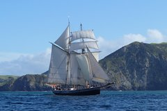 Imagen Bay of Islands Tall Ship Sailing on 'R. Tucker Thompson' Including BBQ Lunch