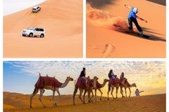 Private Desert Safari Dune Bashing,Camel Ride,Sand Boarding ,Inland Sea Visit