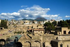 Herculaneum by Train - Entrance Fee Included