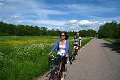 Imagen Private Bike Tour on the Swedish Countryside