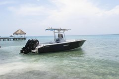 Imagen Tour Islas del Rosario and Baru by Private Boat
