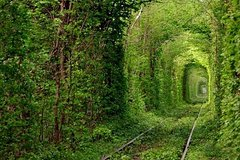 Excursions,Full-day excursions,Excursion to Tunnel of Love