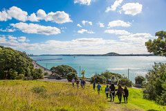 Imagen Maori Guided Walking Tour in Auckland