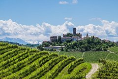 Barolo Wine Tour & Tasting from Turin
