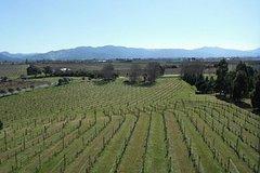 Imagen Picton Shore Excursion: Marlborough Wine Region Small-Group Tour