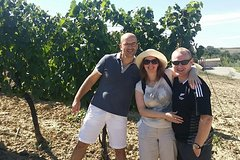 Rosso and Brunello di Montalcino Wine Tour Including Lunch and Visit to 2 L