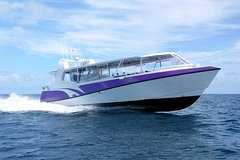 Skedaddle Express Outer Great Barrier Reef Tour from Cairns