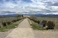 Imagen Recorrido vinícola privado en Luján con almuerzo gourmet maridado con vino desde Mendoza