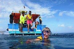 Activities,Activities,Water activities,Water activities,Sports,Sports,Cozumel Cruise,Adventure: ATV, snorkeling, diving...