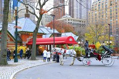 VIP Horse Carriage Tour in Central Park, NYC with Photo Stop