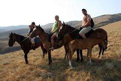Imagen Christchurch Horse Trekking