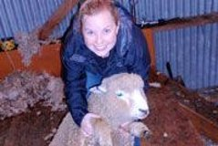 Imagen Christchurch Sheep Farm Visit