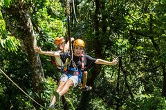Daintree Rainforest Zipline and Wildlife Habitat Day Trip