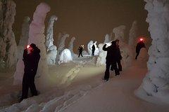 1000 star snowshoe excursion