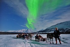 City tours,Activities,Adventure activities,Nature excursions,Northern Lights