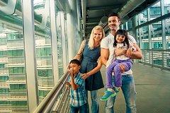 Imagen Entradas a las Torres Petronas (billetes electrónicos)