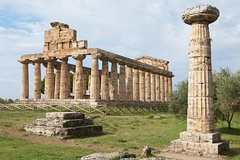 Paestum, Buffalo Mozzarella tasting and light lunch private tour