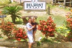 Belmont Estate Heritage Tour