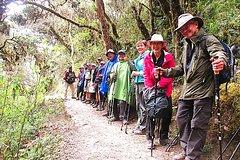 Ver la ciudad,Salir de la ciudad,Actividades,Tours temáticos,Tours históricos y culturales,Excursiones de más de un día,Salidas a la naturaleza,Excursión a Machu Picchu,Machu Picchu en 4 días
