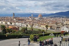 Florence private tour from Rome