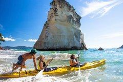Imagen 7-Day North Island Adventure Tour - Auckland to Wellington Return