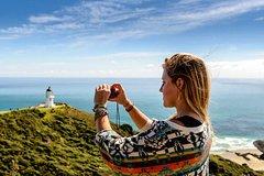 Imagen 3-Day Auckland to Paihia Return Tour