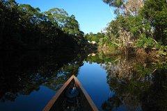 Imagen 4-Day Trip: Cuyabeno Amazon Experience