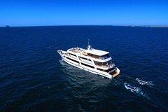 Excursions,Excursions,Multi-day excursions,Multi-day excursions,Excursion to Galápagos Islands 5 days