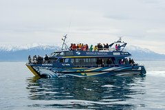 Imagen 3-Day Kaikoura Whale Watching and Christchurch Tour
