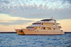 Excursions,Excursions,Multi-day excursions,Multi-day excursions,Excursion to Galápagos Islands 8 days