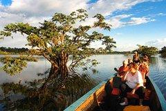 Imagen 4-Day Cuyabeno Amazon Wildlife Adventure Tour from Lago Agria, Ecuador