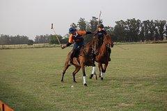 Imagen HORSE & POLO Trip in Balcarce Argentina