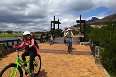 Cape Town Half-Day Guided Bike Tour and Beer Tasting