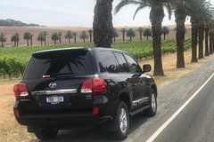 Private Tour 1-6 Passengers Wine Tasting & Or Sightseeing