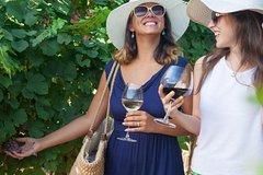 Lugana wine tour with private panoramic boat on Lake Garda