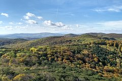 2-Hour Private Hiking Tour to Josefswarte Viewingtower from Vienna