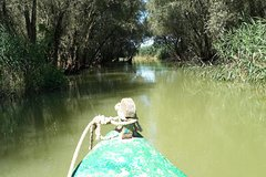 Danube Delta Birdwaching and Safari Experience 3-Day PrivateTour from Bucharest