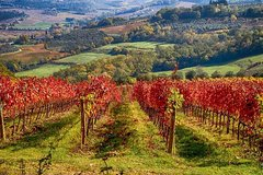 TUSCANY LANDSCAPES, CASTELS & CHIANTI WINE DISTRICT